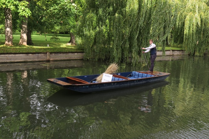 Sheaf spotted punting